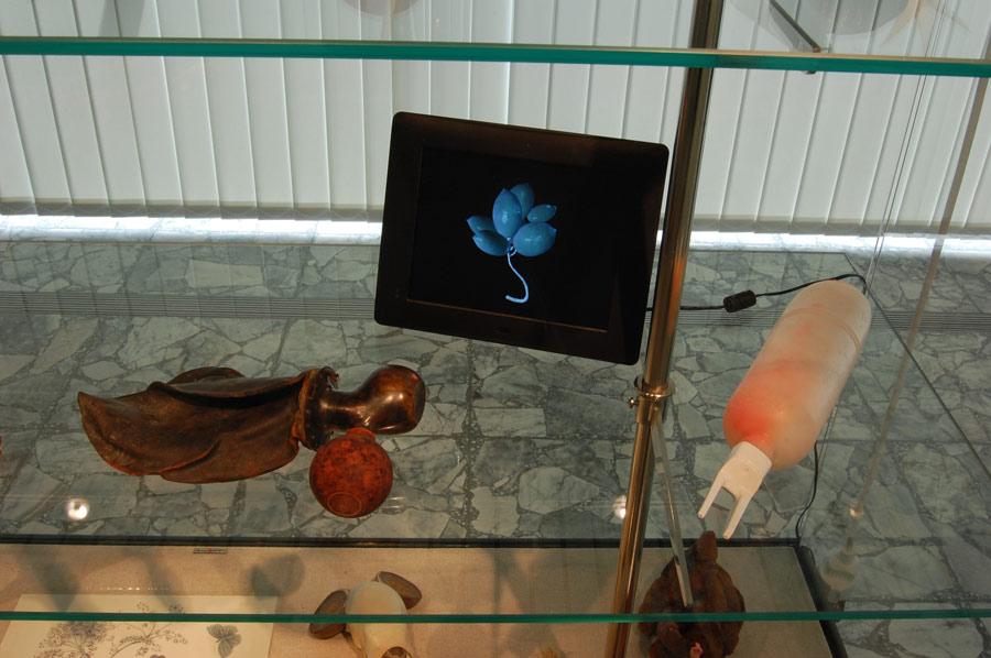 Stefan Zoellner Detail 2012 Simulacrum