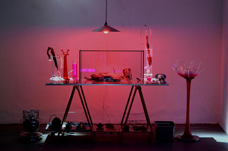 Stefan Zoellner transnature Roter Tisch
