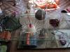 Simulacrum-22-4-2012-003