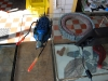 Simulacrum-22-4-2012-007