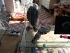 Simulacrum-22-4-2012-019