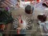 Simulacrum-22-4-2012-023