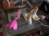 Simulacrum-22-4-2012-025